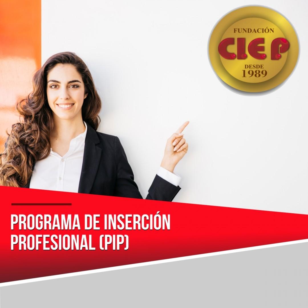 ► PROGRAMA DE INSERCIÓN PROFESIONAL (PIP)